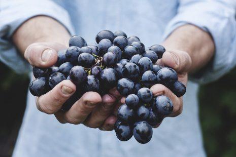 تفسير حلم رؤية الميت يعطي تفاح أو طعام للحي في المنام