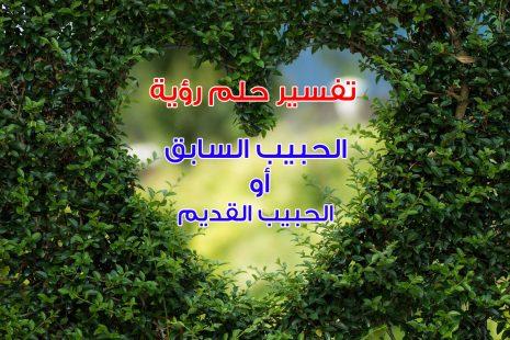 old love تفسير حلم رؤية الحبيب السابق أو حبيب قديم