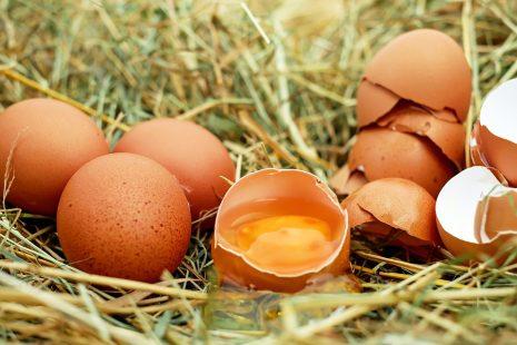 حلم جمع البيض أو رؤية اكل البيض أو شراءه أ وبيعه