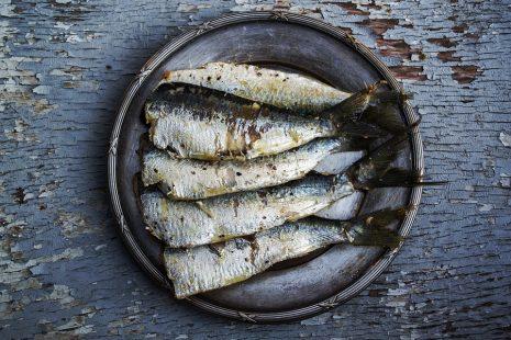 fish cleaning تفسير حلم رؤية تنظيف السمك في المنام